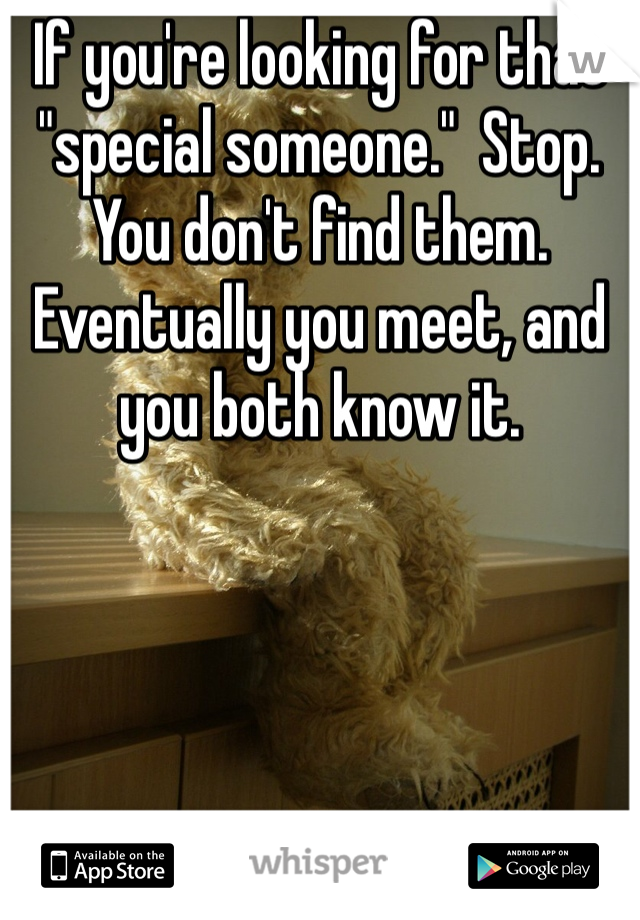 "If you're looking for that ""special someone.""  Stop.  You don't find them.  Eventually you meet, and you both know it."