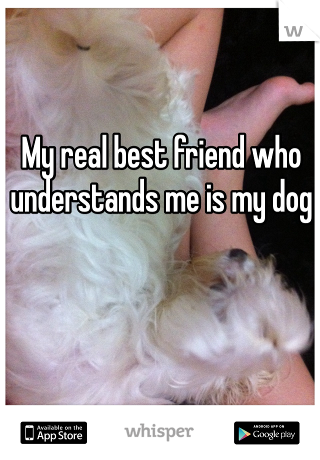 My real best friend who understands me is my dog