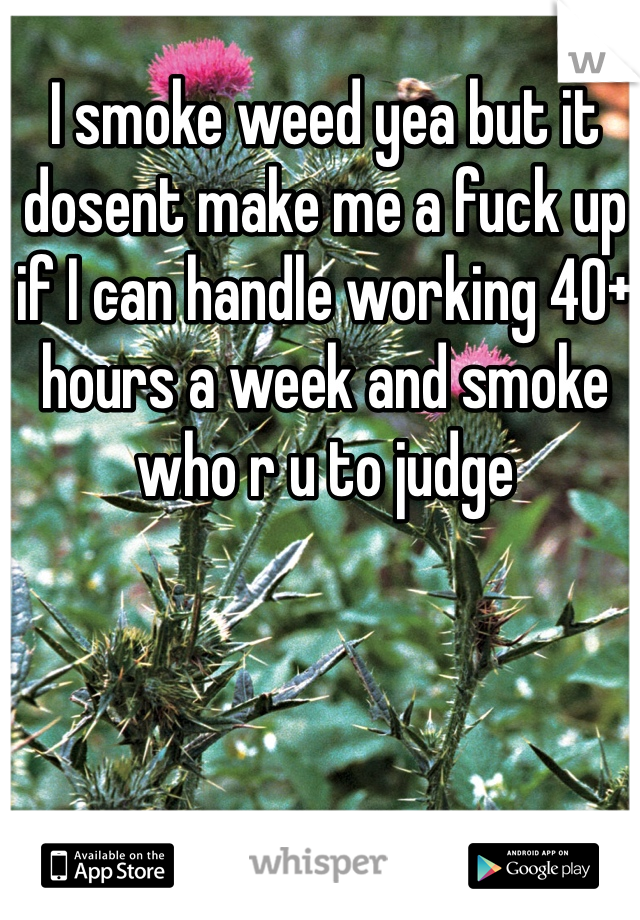 I smoke weed yea but it dosent make me a fuck up if I can handle working 40+ hours a week and smoke who r u to judge