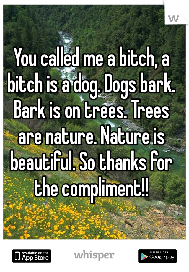 You called me a bitch, a bitch is a dog. Dogs bark. Bark is on trees. Trees are nature. Nature is beautiful. So thanks for the compliment!!