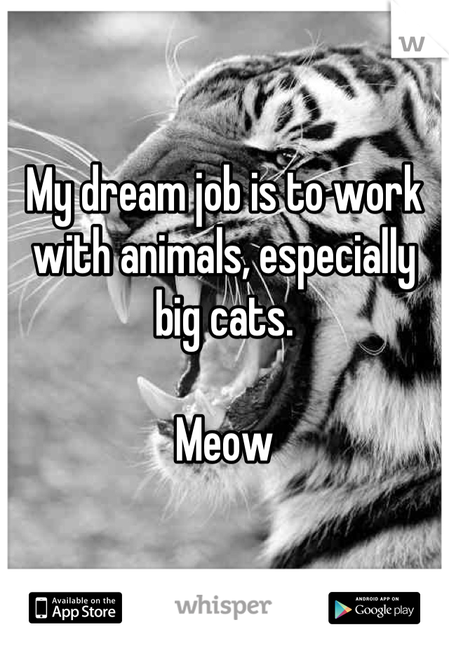 My dream job is to work with animals, especially big cats.   Meow