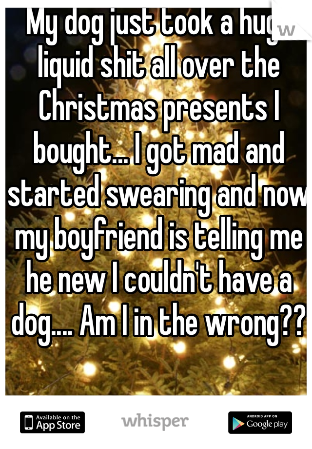 My dog just took a huge liquid shit all over the Christmas presents I bought... I got mad and started swearing and now my boyfriend is telling me he new I couldn't have a dog.... Am I in the wrong??