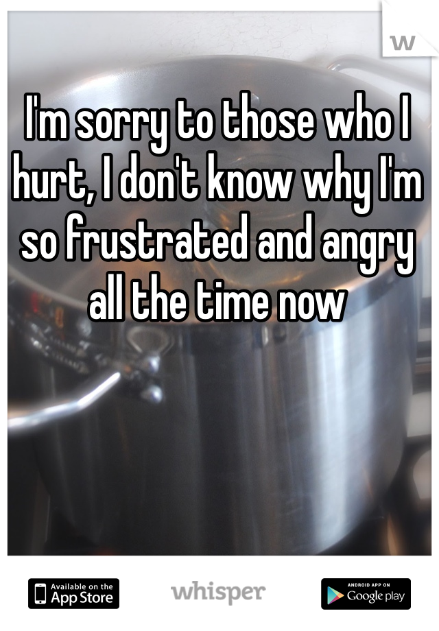 I'm sorry to those who I hurt, I don't know why I'm so frustrated and angry all the time now