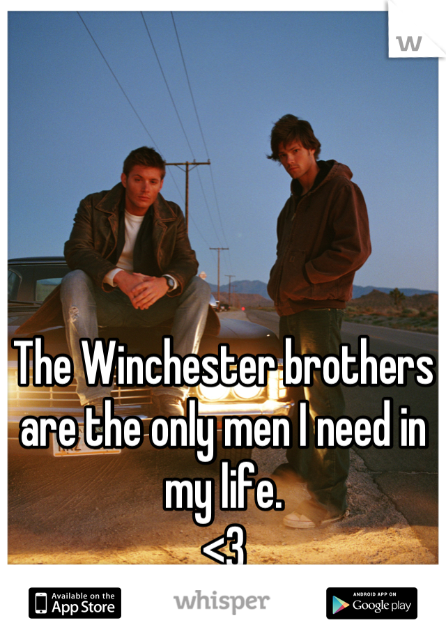 The Winchester brothers are the only men I need in my life.  <3