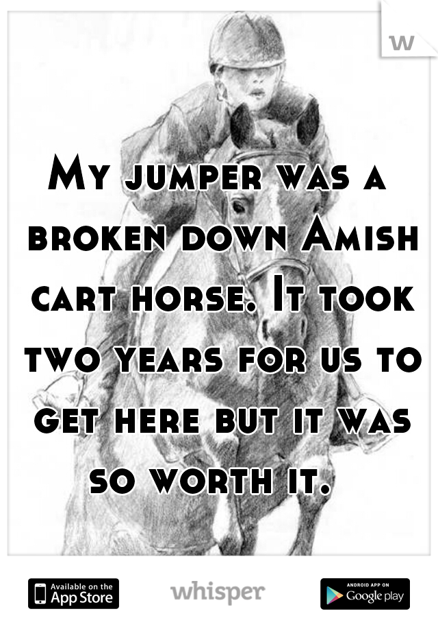 My jumper was a broken down Amish cart horse. It took two years for us to get here but it was so worth it.