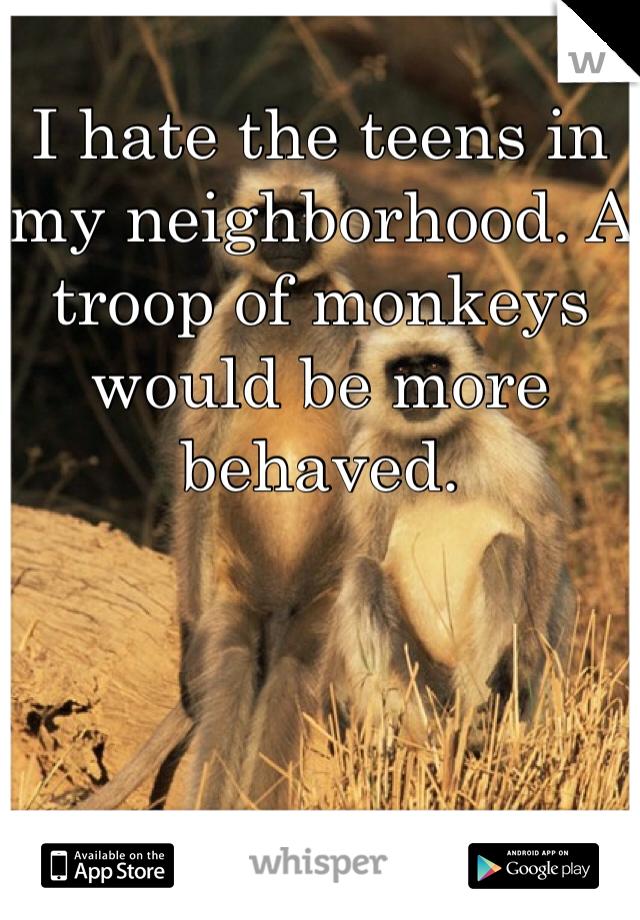 I hate the teens in my neighborhood. A troop of monkeys would be more behaved.