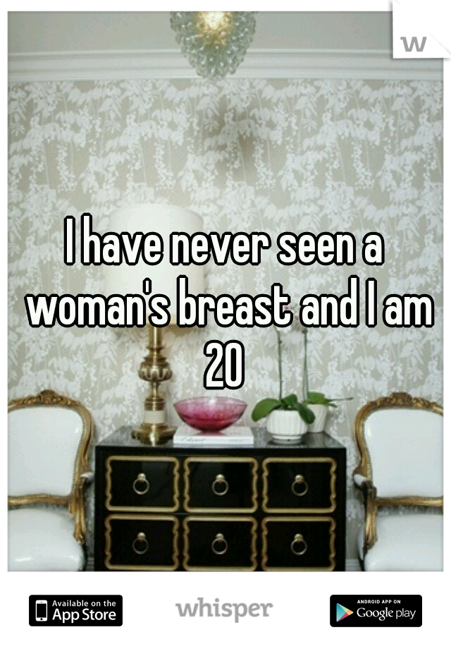 I have never seen a woman's breast and I am 20
