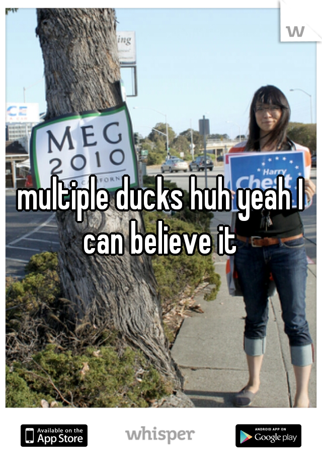 multiple ducks huh yeah I can believe it