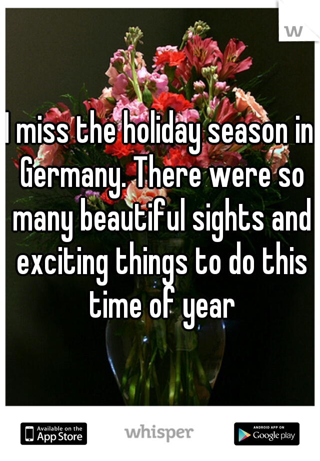 I miss the holiday season in Germany. There were so many beautiful sights and exciting things to do this time of year