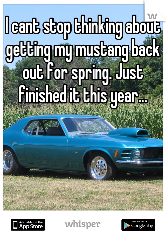I cant stop thinking about getting my mustang back out for spring. Just finished it this year...