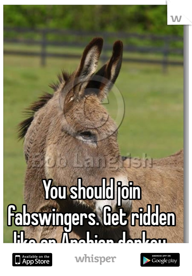 You should join fabswingers. Get ridden like an Arabian donkey.