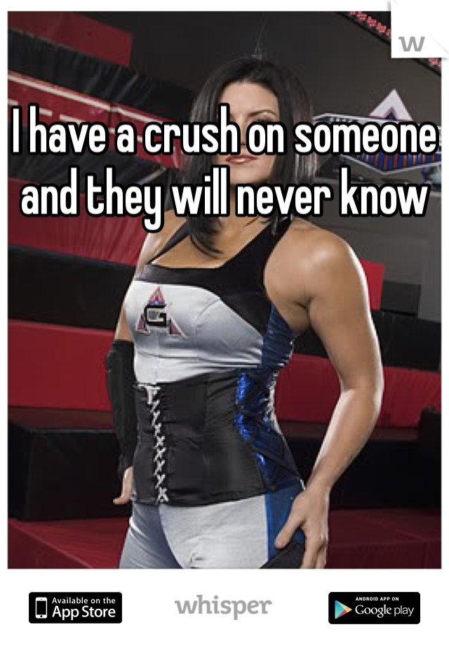 I have a crush on someone and they will never know