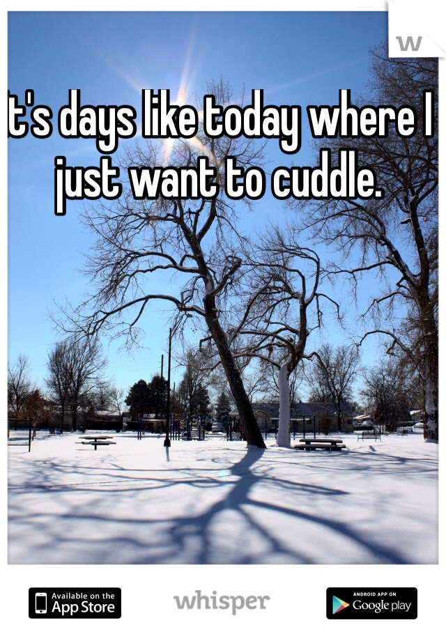 It's days like today where I just want to cuddle.