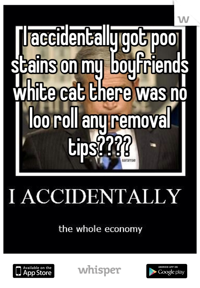 I accidentally got poo stains on my  boyfriends white cat there was no loo roll any removal tips????