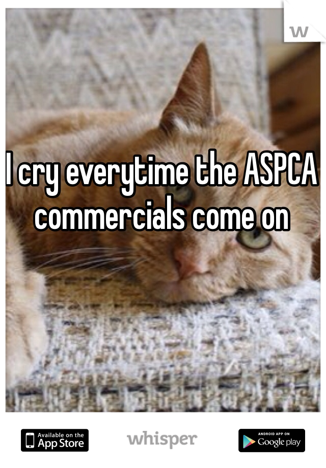 I cry everytime the ASPCA commercials come on