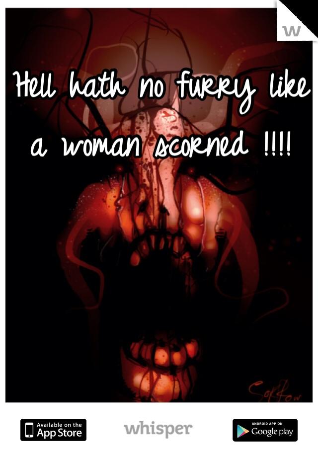 Hell hath no furry like a woman scorned !!!!