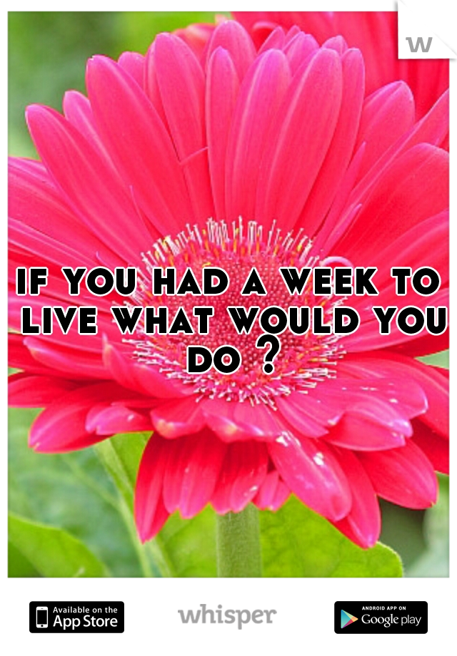 if you had a week to live what would you do ?