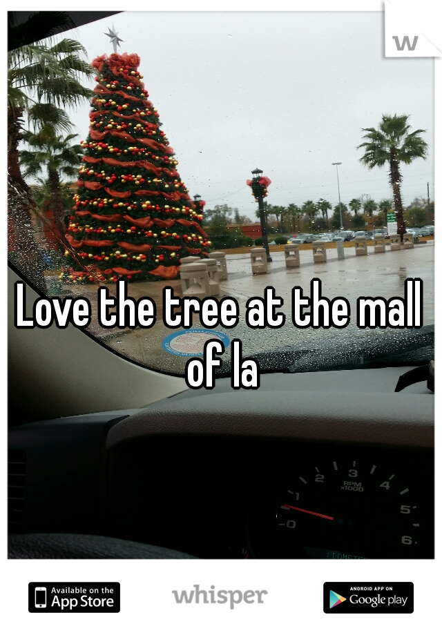 Love the tree at the mall of la