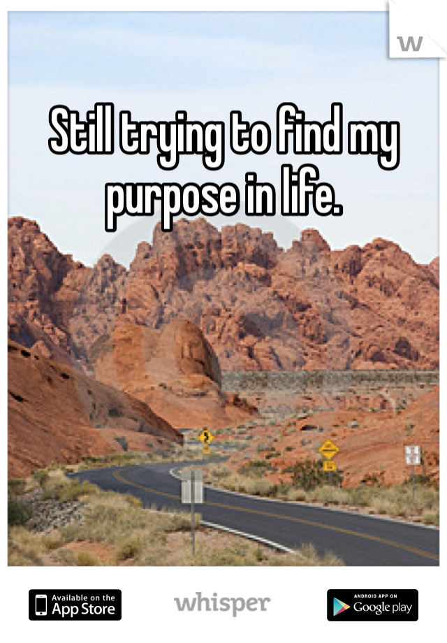 Still trying to find my purpose in life.