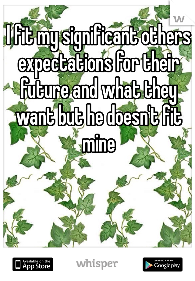 I fit my significant others  expectations for their future and what they want but he doesn't fit mine