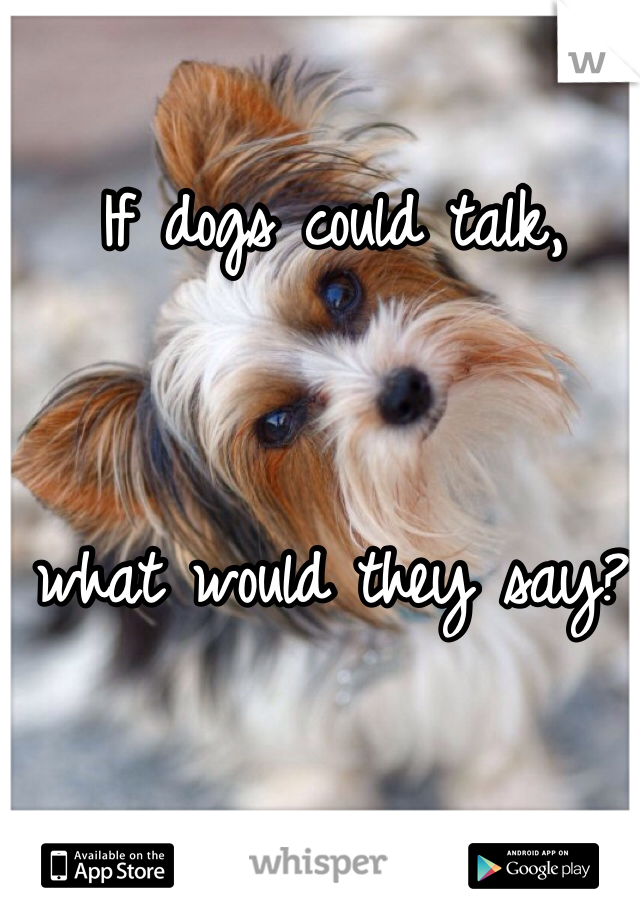 If dogs could talk,    what would they say?