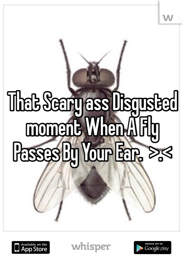 That Scary ass Disgusted moment When A Fly Passes By Your Ear.  >.<