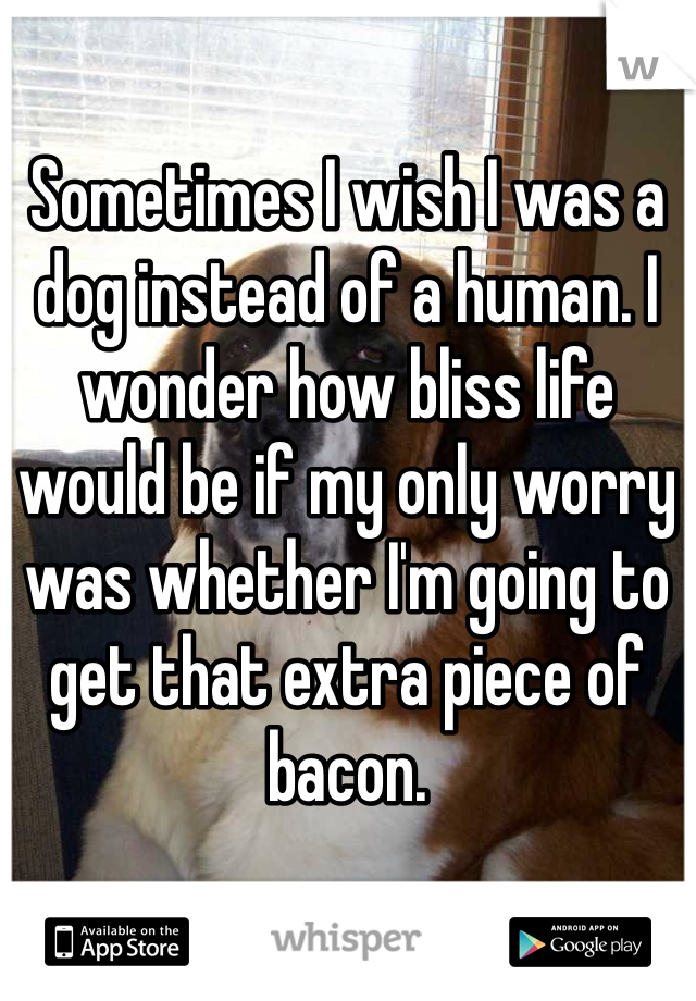 Sometimes I wish I was a dog instead of a human. I wonder how bliss life would be if my only worry was whether I'm going to get that extra piece of bacon.