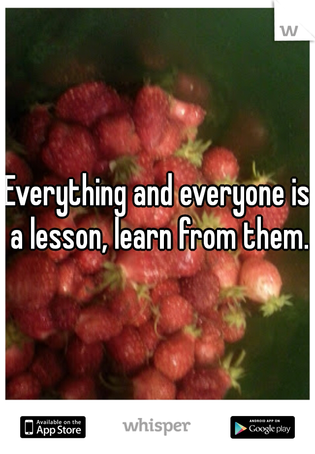 Everything and everyone is a lesson, learn from them.