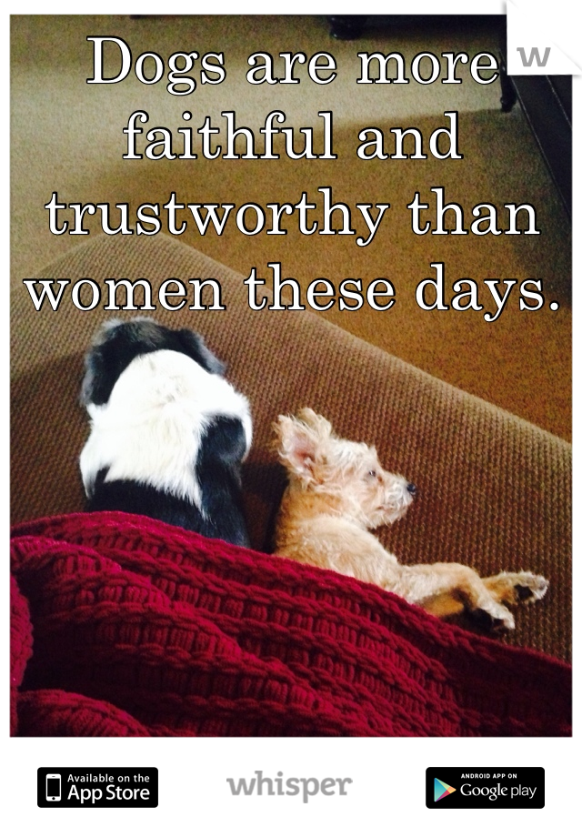 Dogs are more faithful and trustworthy than women these days.