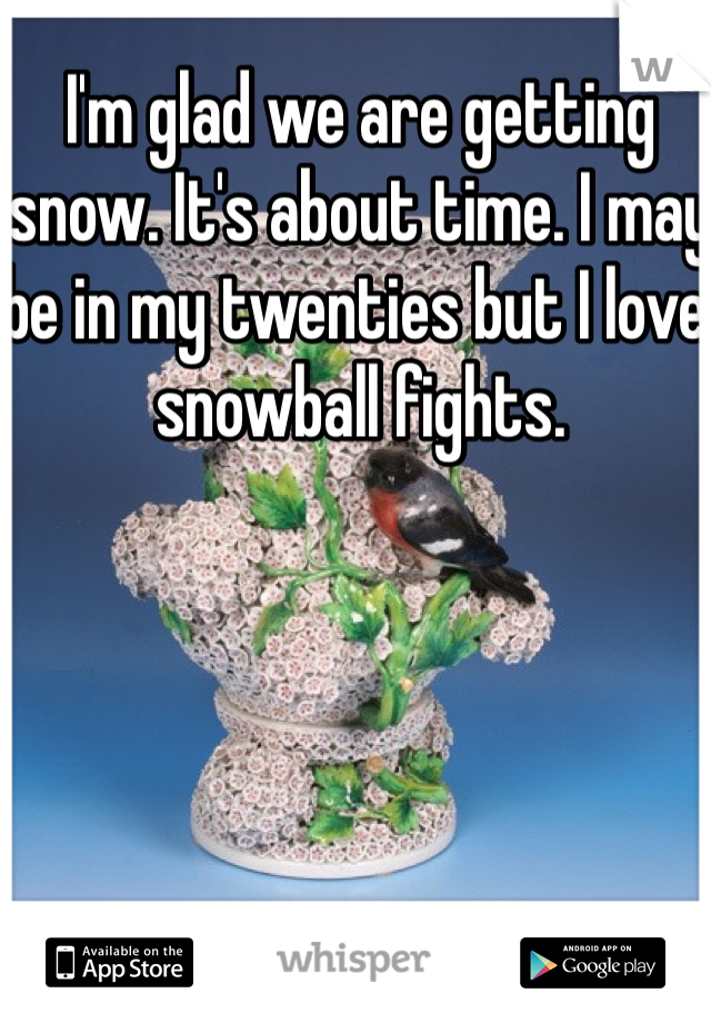 I'm glad we are getting snow. It's about time. I may be in my twenties but I love snowball fights.