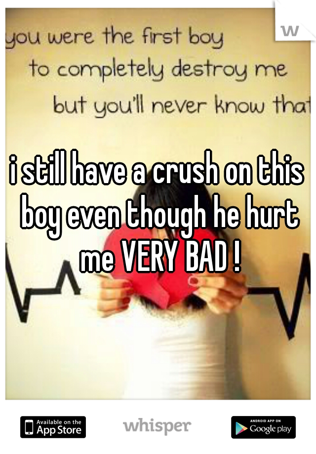 i still have a crush on this boy even though he hurt me VERY BAD !