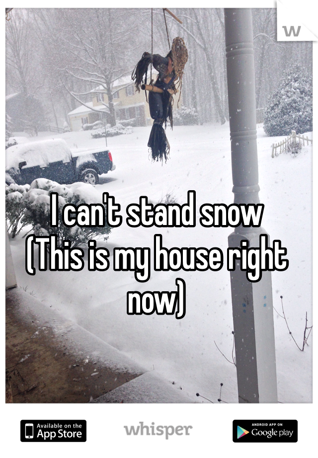 I can't stand snow  (This is my house right now)