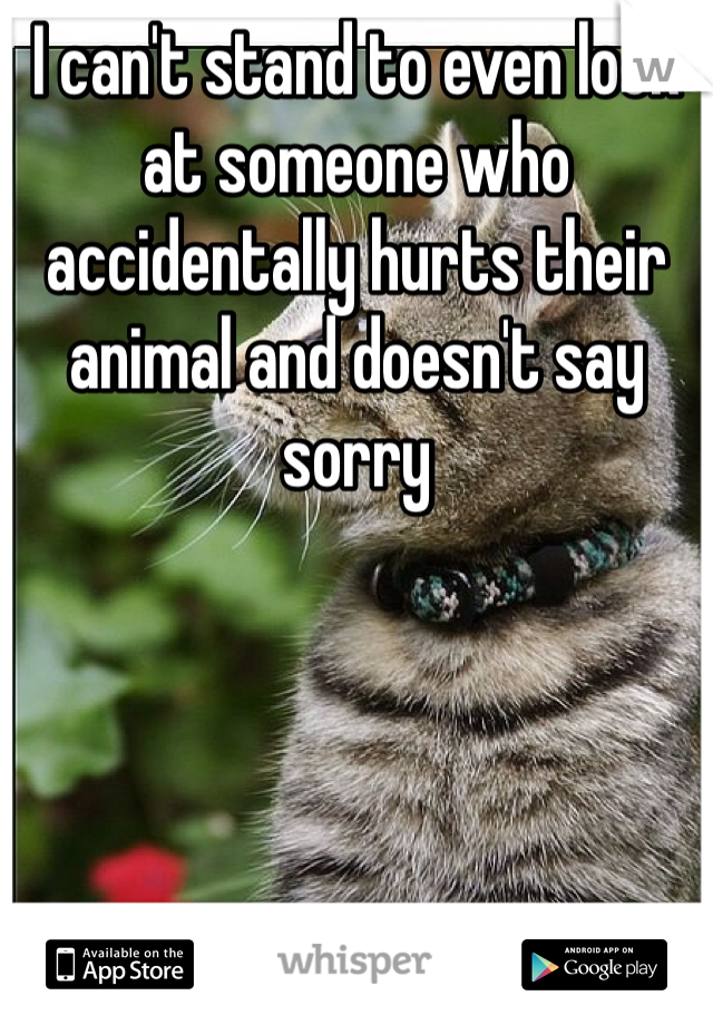 I can't stand to even look at someone who accidentally hurts their animal and doesn't say sorry