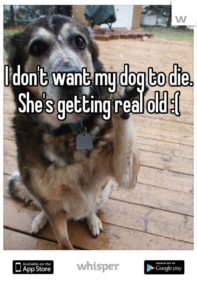 I don't want my dog to die. She's getting real old :(