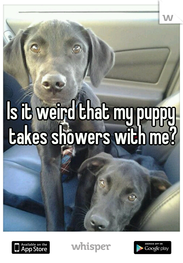 Is it weird that my puppy takes showers with me?