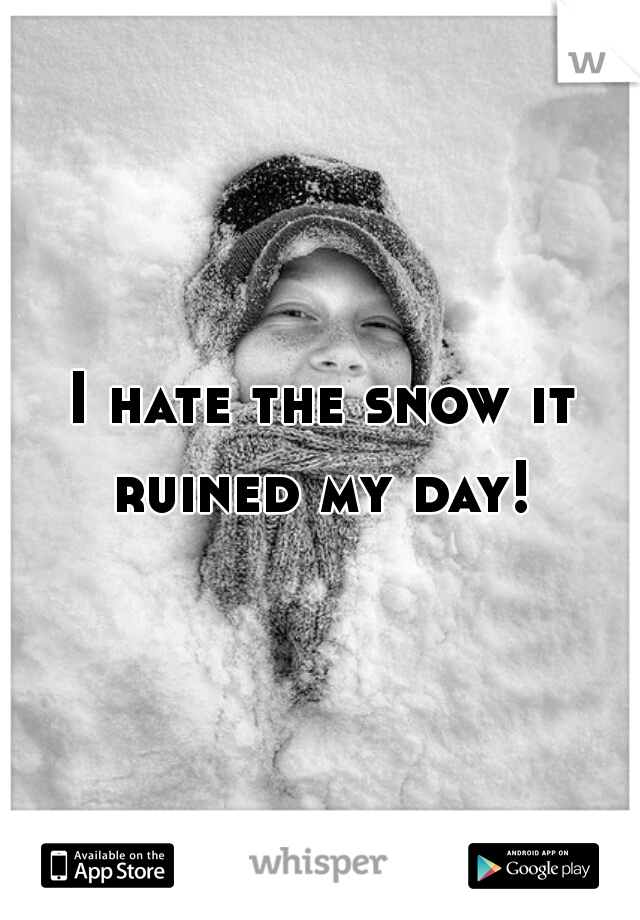 I hate the snow it ruined my day!
