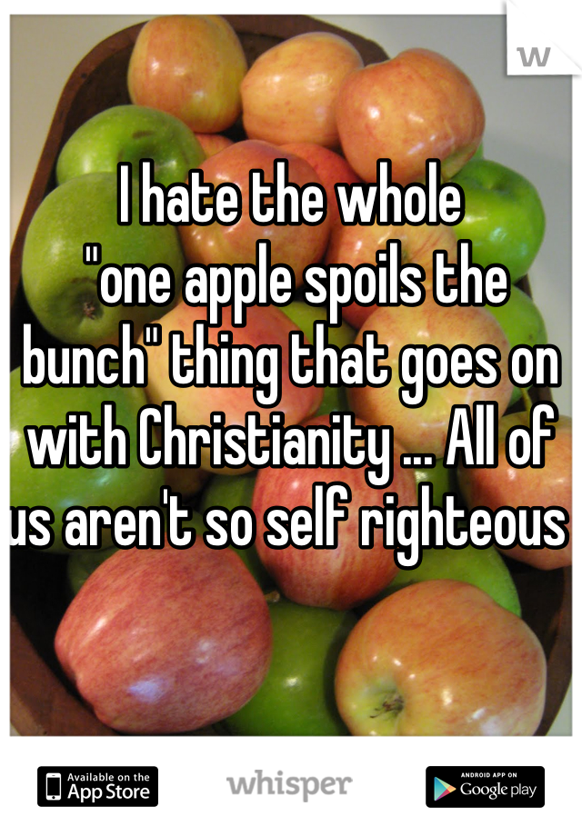 """I hate the whole  """"one apple spoils the bunch"""" thing that goes on with Christianity ... All of us aren't so self righteous"""