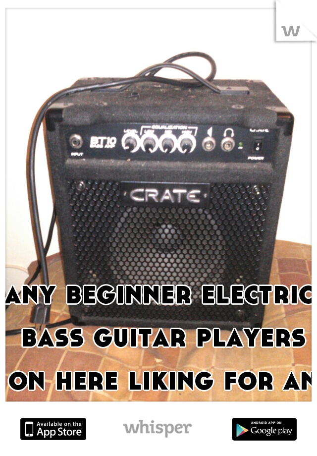 any beginner electric bass guitar players on here liking for an amp? let me know!