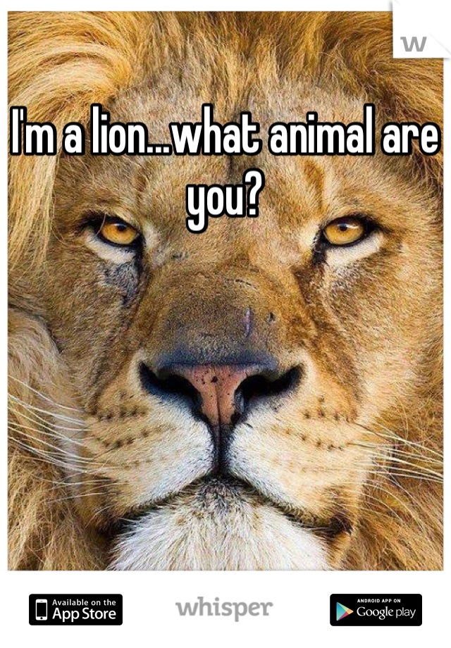 I'm a lion...what animal are you?