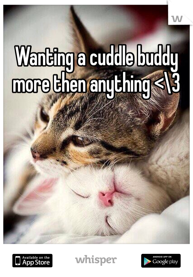 Wanting a cuddle buddy more then anything <\3