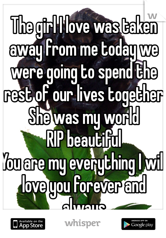The girl I love was taken away from me today we were going to spend the rest of our lives together  She was my world RIP beautiful  You are my everything I will love you forever and always