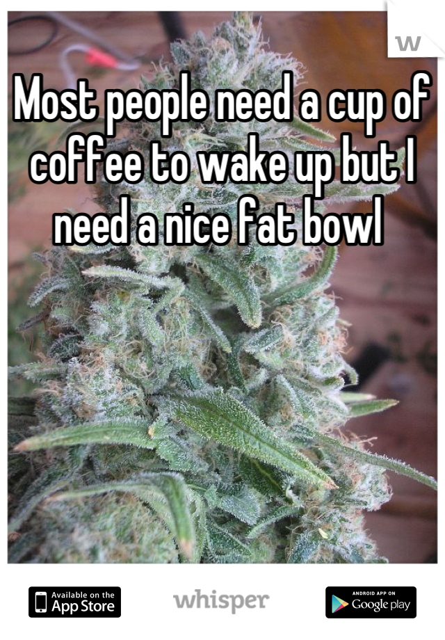 Most people need a cup of coffee to wake up but I need a nice fat bowl