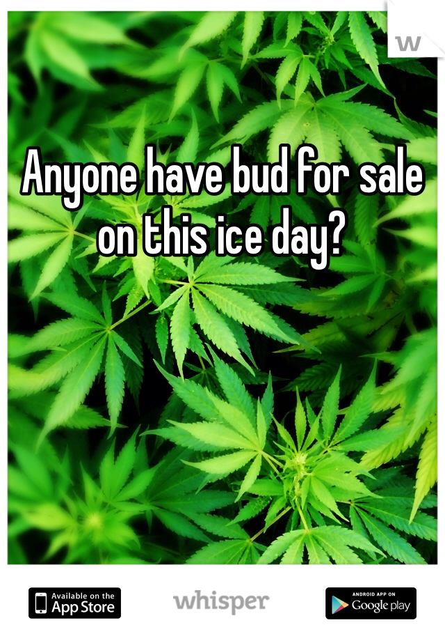 Anyone have bud for sale on this ice day?