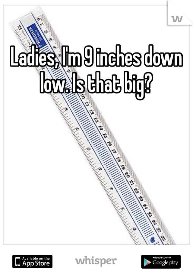 Ladies, I'm 9 inches down low. Is that big?