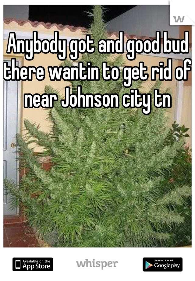 Anybody got and good bud there wantin to get rid of near Johnson city tn