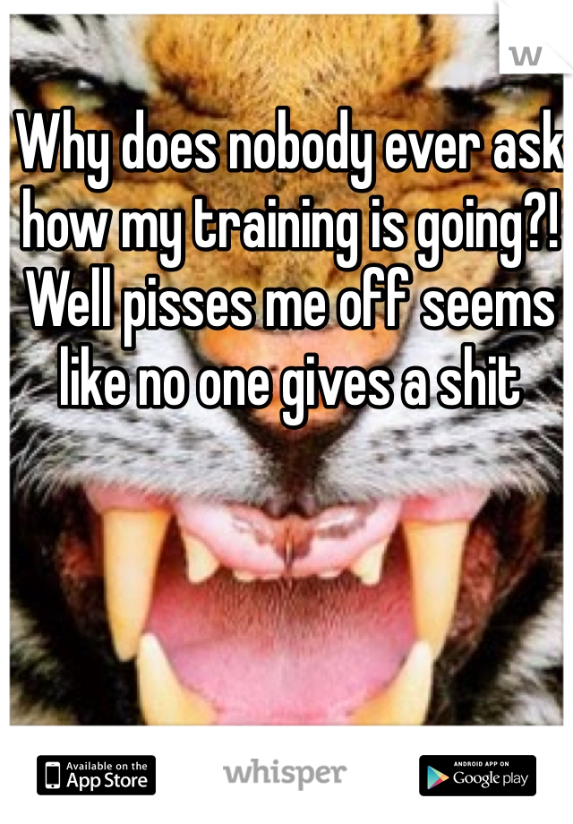 Why does nobody ever ask how my training is going?! Well pisses me off seems like no one gives a shit