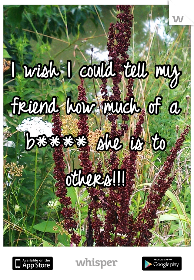 I wish I could tell my friend how much of a b**** she is to others!!!