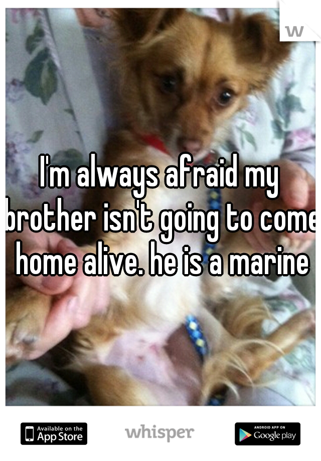 I'm always afraid my brother isn't going to come home alive. he is a marine