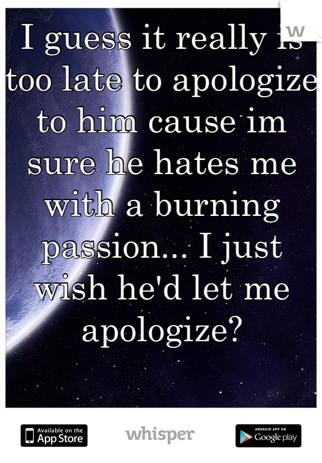 I guess it really is too late to apologize to him cause im sure he hates me with a burning passion... I just wish he'd let me apologize?