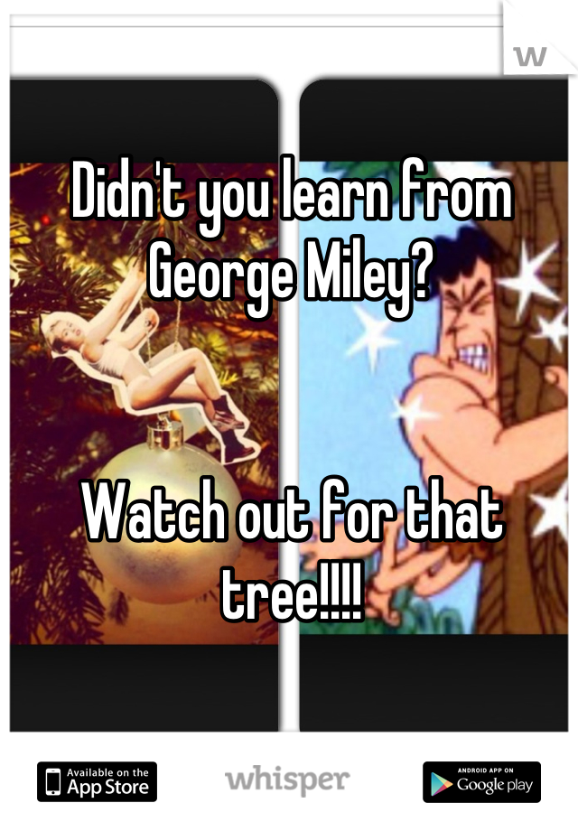 Didn't you learn from George Miley?    Watch out for that tree!!!!